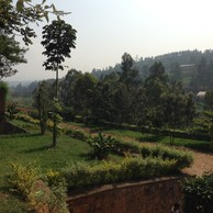 Room to Dream: A Reflection on Rwanda