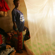 Freedom from Hunger Wants Freedom from Malaria–And You Can Help