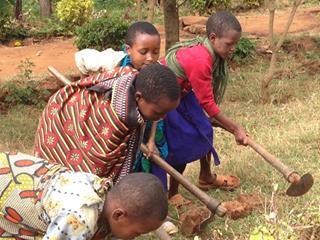 Karimu kids gardening